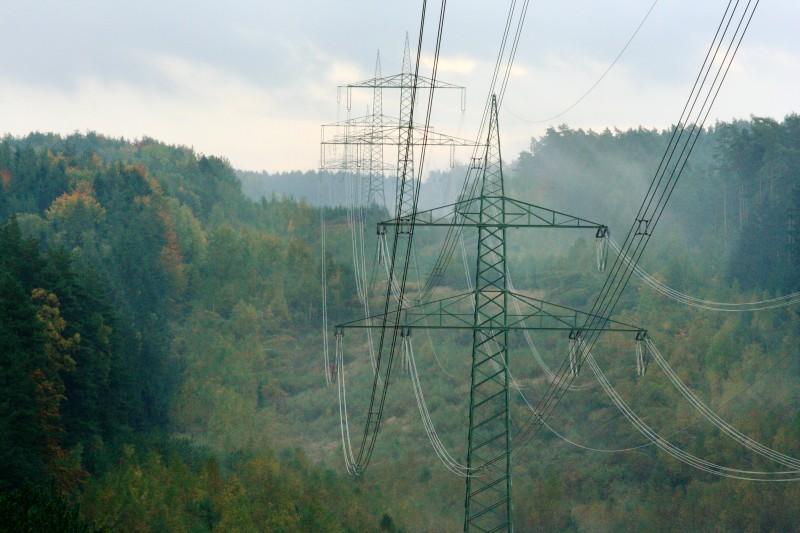 Stromtrasse im Thüringer Wald - Foto: NABU/E. Neuling