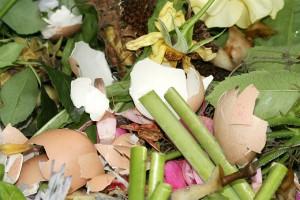 Bio- und Grünabfälle sind dankbarer Müll. Er lässt sich sowohl zur Energie- als auch Kompostherstellung nutzen- Foto: Helge May