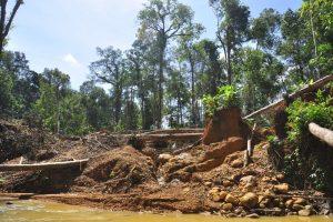 Der illegale Goldabbau hat eine zerstörender Wirkung auf den Regenwald .Foto: Andrea Schell