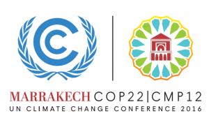 Die Klimakonferenz der Vereinten Nationen findet dieses Jahr im Marrokanischen Marrakesch statt.
