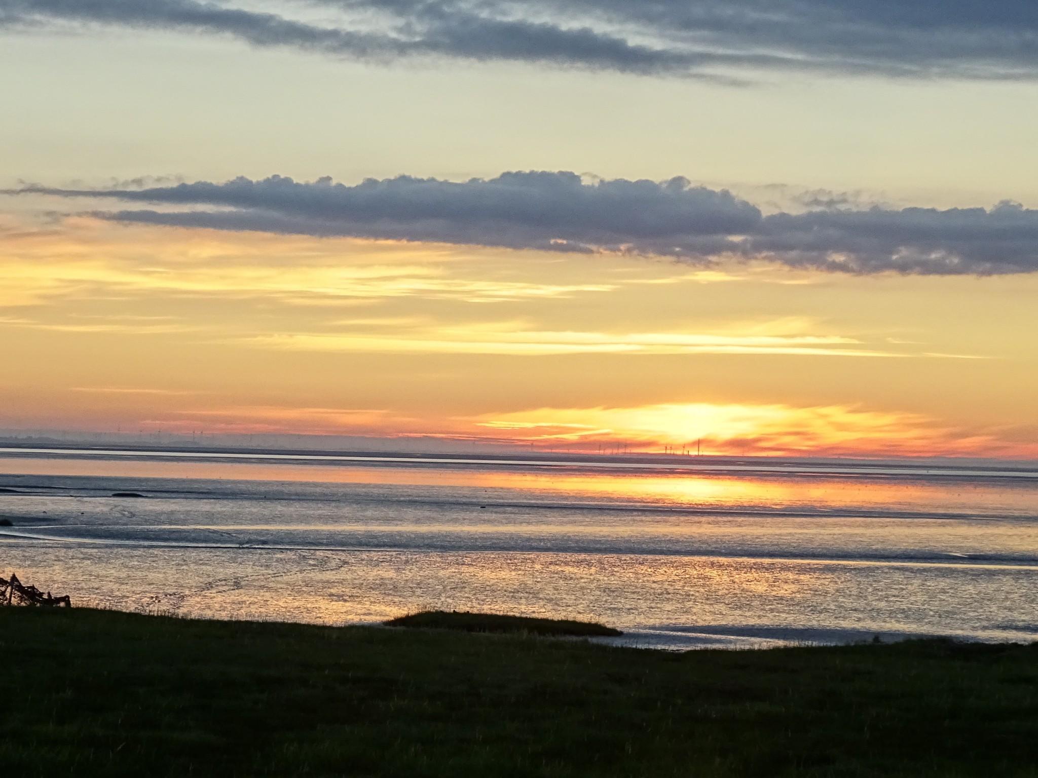 Sonnenaufgang über dem Watt