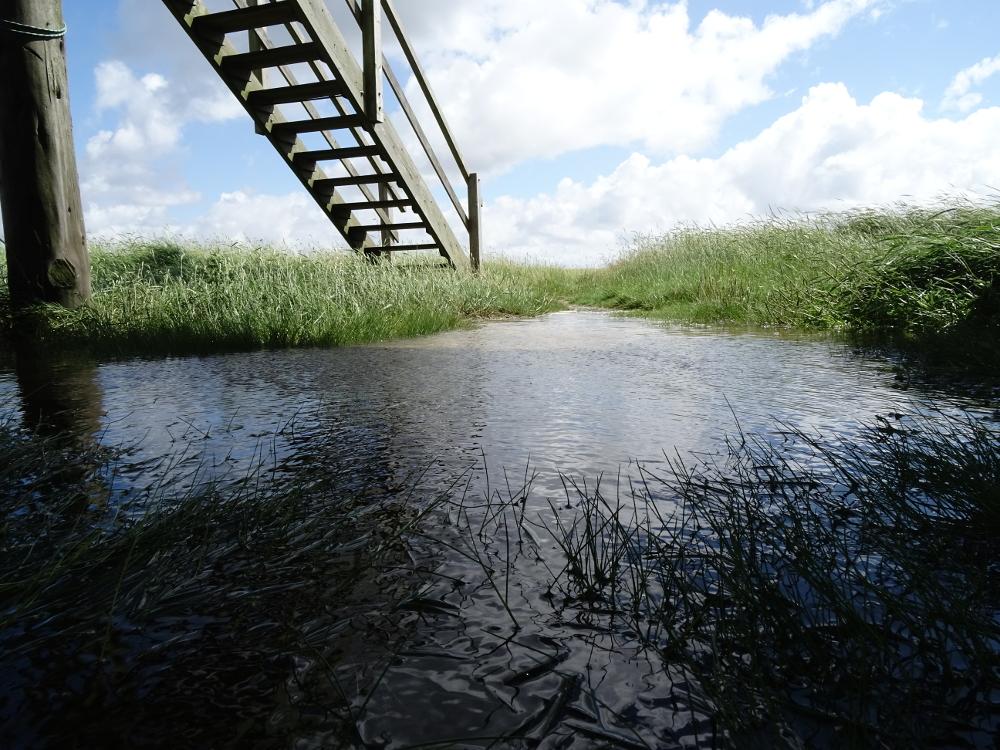 Auch unter der Hütte stand das Wasser knietief!