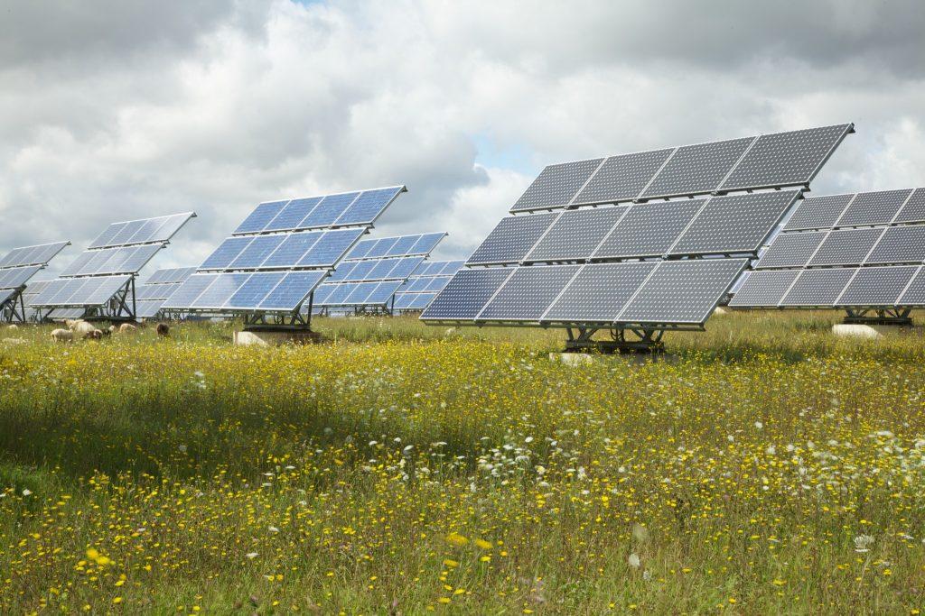 Solarenergie, die zukünftige Basis unserer naturverträglichen Energieversorgung. Foto: NABU/E.Neuling