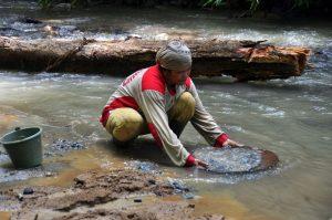Goldabbau im Sulawesi-Regenwald. Foto: Andrea Schell