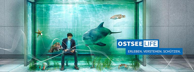 Eintauchen in die erste Virtuelle Realität der Ostsee