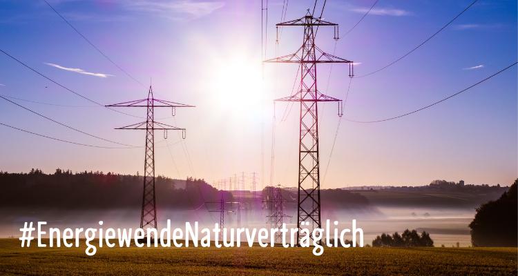 Der Stromnetzausbau ist nicht immer gewollt