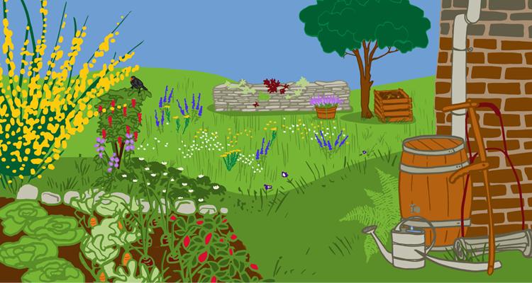 Mein Garten im Klimawandel