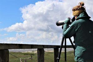 Die Vogelwartin bei der Arbeit. Foto: Anne de Walmont