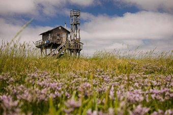 Vogelwärterhütte auf Trischen. Foto: Anne de Walmont