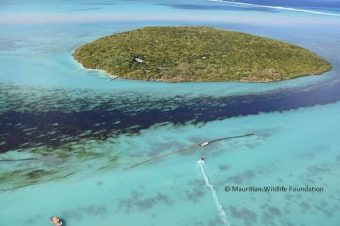 Oil spill Mauritian Wildlife Foundation