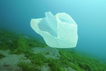 Die Lösungen für das Plastikproblem im Meer liegen an Land. - Foto: Bildagentur Waldhäusl/Wolfgang Pölzer