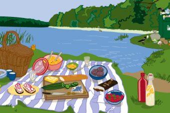 Picknick am Fluss - Illustration: Jule Roschlau