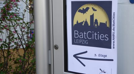 BatCity Leipzig #1