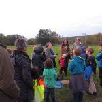 Die NABU Kindergruppe Reinickendorf sucht die Fledermaus!
