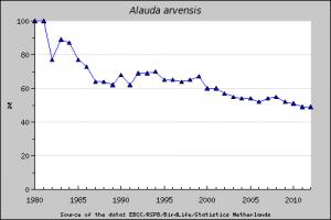 Bestandsentwicklung der Feldlerche in Europa 1980-2012 (EBCC/RSPB/BirdLife/Statistic Netherlands)