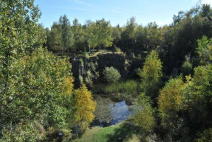 Teil von Natura 2000. Das Mayener Grubenfeld ist einer der wichtigsten Fledermausquartiere Mitteleuropas. Foto: Andreas Kiefer.