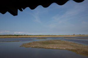 Blick vom Beobachtungshütte auf die Teiche des NABU-Wasservogelreservates Wallnau. Foto: NABU/Klemens Karkow