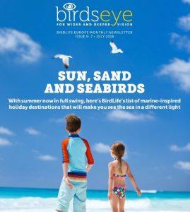 """Die Juliausgabe des BirdLife Newsletter """"birdseye"""" ist da."""