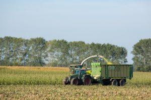 Karkow_KK_Landwirtschaft
