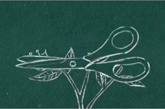"""Filmausschnitt aus """"Was ist Synthetische Biologie?"""" des Bioeconomies Media Project und der ETC Group"""