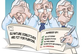 Comic: WWF Europe