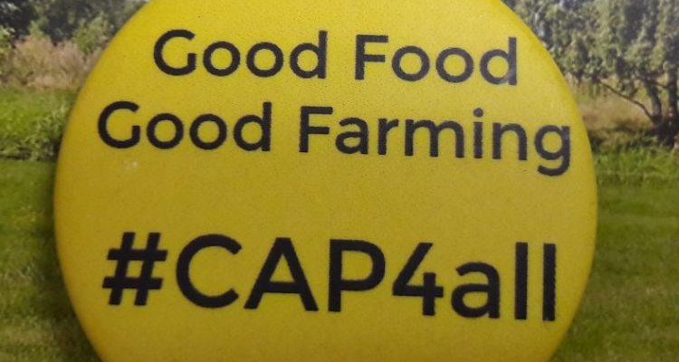 Durchgesickert: Schwache Ideen für die neuen EU-Agrarpolitik