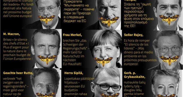 Das stille Sterben der Insekten, das Schweigen der Politik