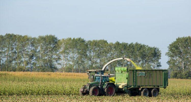 Streit ums Geld entzweit EU-Agrarminister