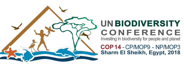 COP-CORNER: Rückschlag für den Meeresschutz