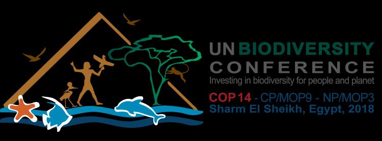 COP-Corner: Wochenende in Sharm el Sheich