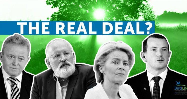 Wir grün ist der Deal?