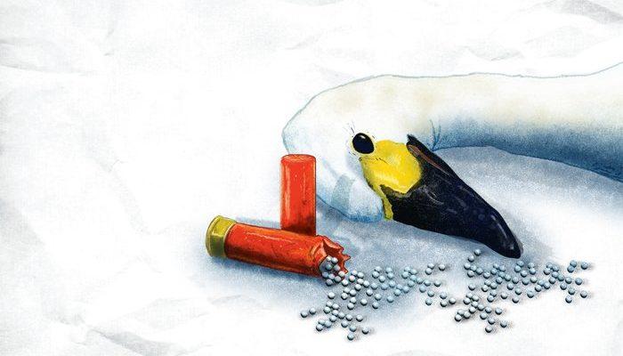 Bleihaltige Jagdmunition endlich verbieten!
