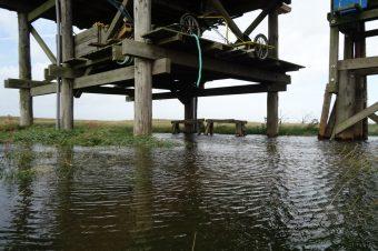 Drei Mal in Folge lief das Wasser nun so hoch auf, dass die Hütte im Wasser stand!