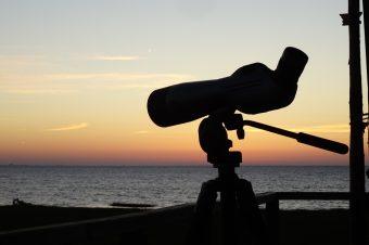 Planvogelzug - Die Zählung beginnt mit dem Sonnenaufgang