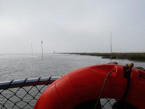 Überfahrt ans Festland - der Nebel lichtete sich gegen Mittag und gab einen herrlichen Blick auf die Hafeneinfahrt von Friedrichskoog frei