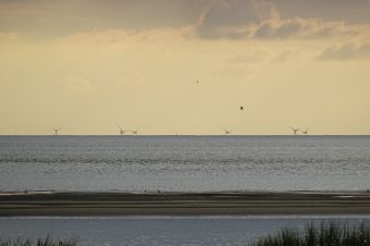 """Bei guter Sicht von Trischen aus zu sehen: die Windräder es Windparks """"Nordergründe"""""""